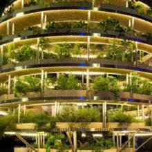 IKEA Releases Free Growroom Vertical Garden Plans