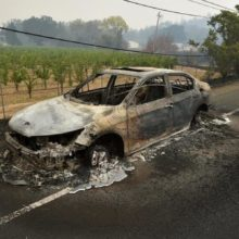 Why Did Cars Melt While Trees and Plastic Structures Remained Intact During California Fires?