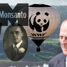 Monsanto and the WWF: a Disguise to Steal the Rainforest, Africa, and the Earth